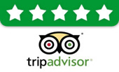 Our TripAdvisor Reviews
